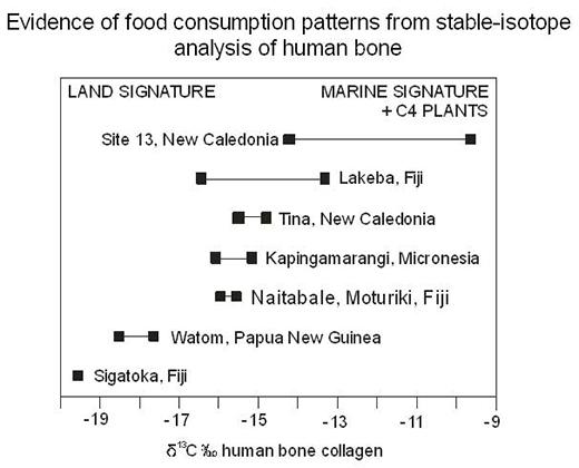 Evidence Food Consumption Lapita Pottery Fiji Dr Patrick Nunn Curator Web Design Diana Giesbrecht